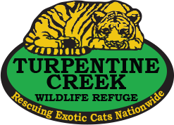 Turpentine Creek Wildlife Refuge Coupon